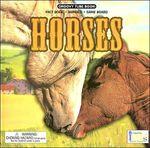 Groovy Tube Books: Horses