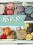 Knit It! Learn the basics and knit 25 basic projects