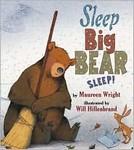 Sleep Big Bear, Sleep!