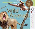 Stereobook: Wild Animals