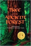 The Tree in the Ancient Forest