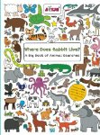 Where Does Rabbit Live? A Big Book of Animal Searches