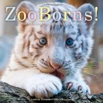 ZooBorns! Zoo Babies from Around the World