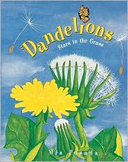Dandelions: Stars in the Grass